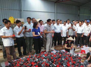 Hoạt động sản xuất muối ngâm chân của HTX Sinh Dược - Mô hình kinh tế kiểu mới
