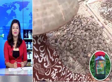 Phóng sự truyền hình về bài muối thảo dược xoa dịu những cơn đau khớp, mất ngủ